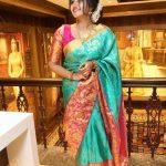 Anupama Parameswaran Stealing Hearts in Silk saree